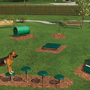 Bark Park Intermediate Course