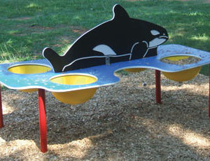 Whale Sand and Water Table