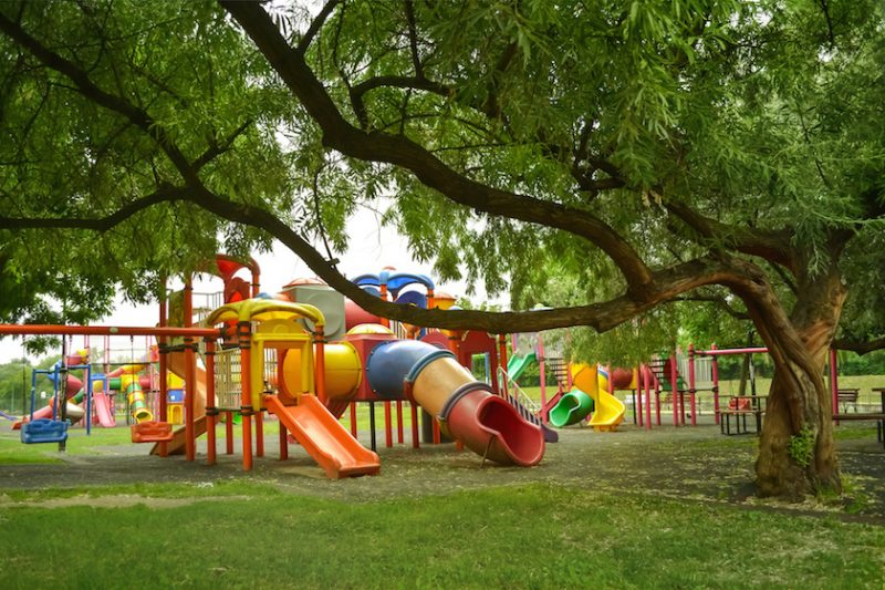 Why Are Playgrounds Important for Physical Development?